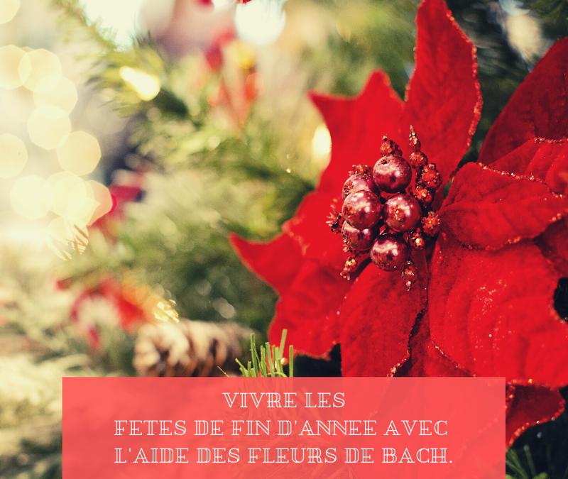 Vivre les fêtes de fin d'année avec l'aide des fleurs de Bach